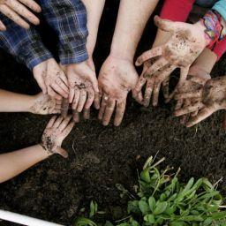 Journée de la Terre : on continue d'agir !