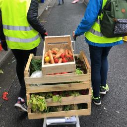 Agir depuis chez vous avec Benenova, pour la semaine européenne de la réduction des déchets