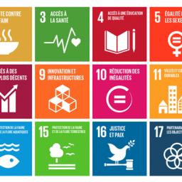 7 gestes pour agir au quotidien pendant la Semaine Européenne du Développement Durable